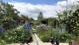NGS Open Day at Duck Pond Barn
